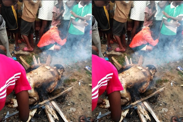 Pictures of Nigerians roasting chimpanzee for meat shock people!