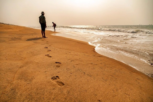 How to plan a trip to Ilashe beach resort in Lagos